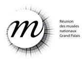logo RMNGP